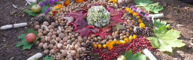 Herbst im Waldkindergarten