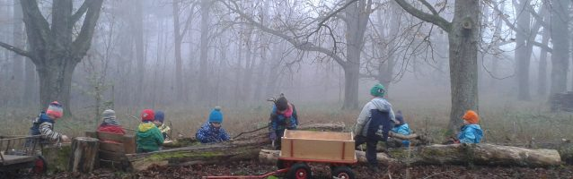 Fleißige Waldarbeiter….